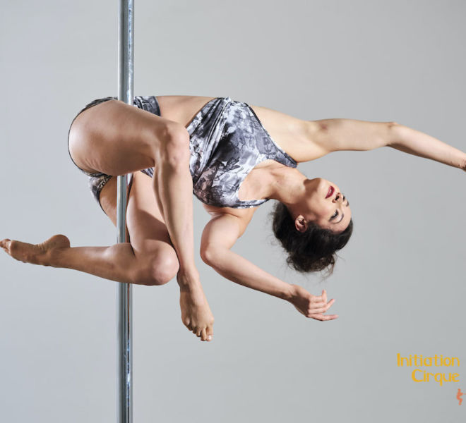 Spectacle-pole-dance-2