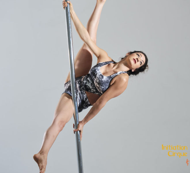 Spectacle-pole-dance-3
